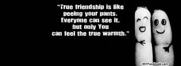 Greatest sexy quotes about friendship: True friendship is like peeing your pants everyone can see it.