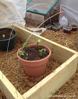 Completed wire for the cold frame arch