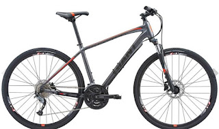 Stolen Bicycle - Giant Roam 2