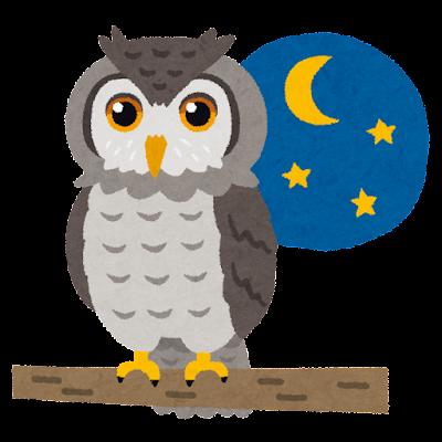 夜のフクロウのイラスト