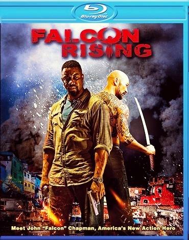 Falcon Rising 2014 Hindi Dual Audio BluRay 480p 300MB 720p 950MB ESubs