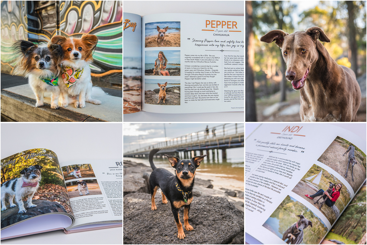Pages showing Melbourne rescue dogs in Erin King's book Longing for Love