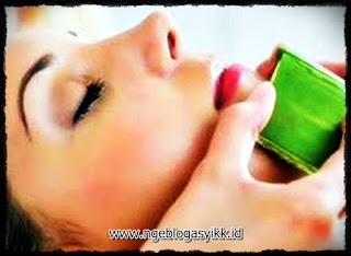 Lidah buaya obat jerawat alami