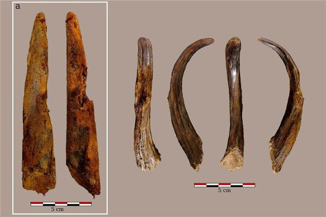 Oldest Neanderthal wooden tools found in Spain