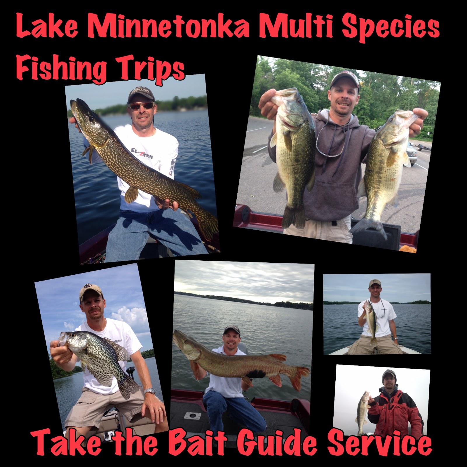 Take the bait guide service on lake minnetonka for Lake minnetonka fishing guide
