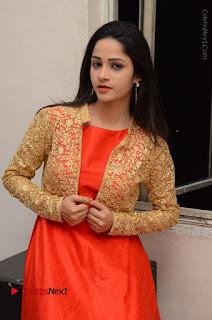 Telugu Actress Divya Nandini Stills in Orange Sleeveless Gown at Chennai Chaitrama Movie le Launch Event  0111.JPG