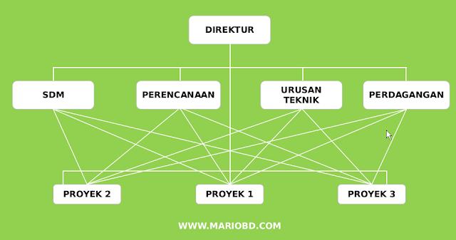 struktur organisasi fungsonal