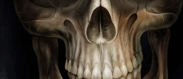 Skull 3d Wallpaper: Beautiful Wallpapers: 3d Skull 4 Iphone 5