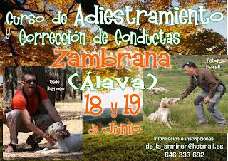 http://noticiasarminen.blogspot.com.es/p/curso-de-adiestramiento-en-zambrana_8.html