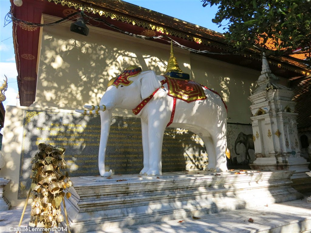 Doi Suthep White Elephant