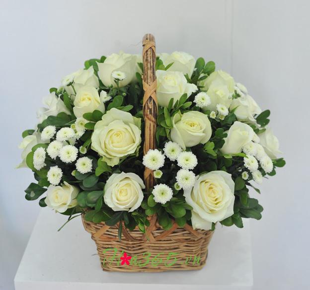 bó hoa hồng trắng đẹp nhất 2017 2