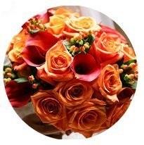 Warm Autumn seasonal color palette flower bouquet illustration