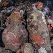 Испанским археологам удалось найти корабль с сокровищами древних римлян, который утонул около 1800 лет назад