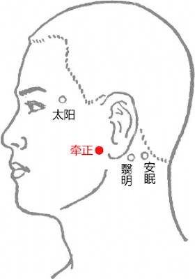 牽正穴位 | 牽正穴痛位置 - 穴道按摩經絡圖解 | Source:big5.wiki8.com
