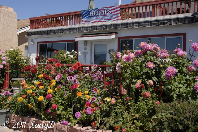 LadyD Books: Oceanside, California