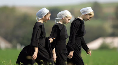 The Top 10 Things You Should Know While Reading Amish Fiction