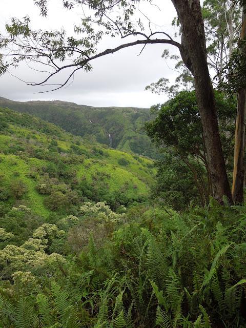 Makamaka'ole Falls