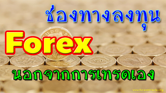 Forex pamm investment