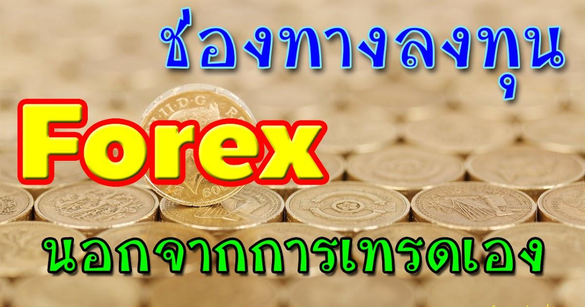 Forex pamm investment