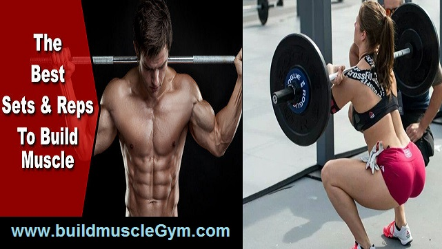 Beginners Guide Bodybuilding To Set And Rep
