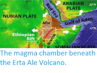 http://sciencythoughts.blogspot.co.uk/2012/04/magma-chamber-beneath-erta-ale-volcano.html