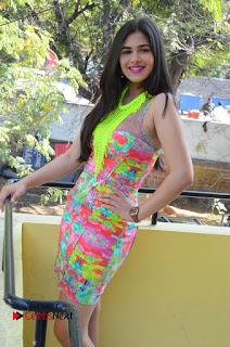 Telugu Actress Prasanna Stills in Short Dress at Inkenti Nuvve Cheppu Press Meet Stills  0085.JPG