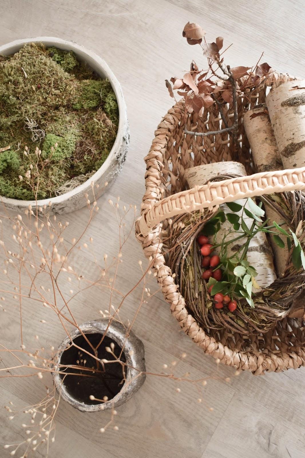 Herbstliche Deko für den Tisch, Sideboard und Konsole. Dekoidee mit Moos, Hagebutte Zutaten Korb