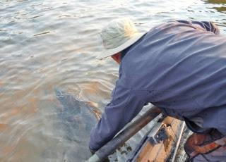 Rogue-river-fishing-guide