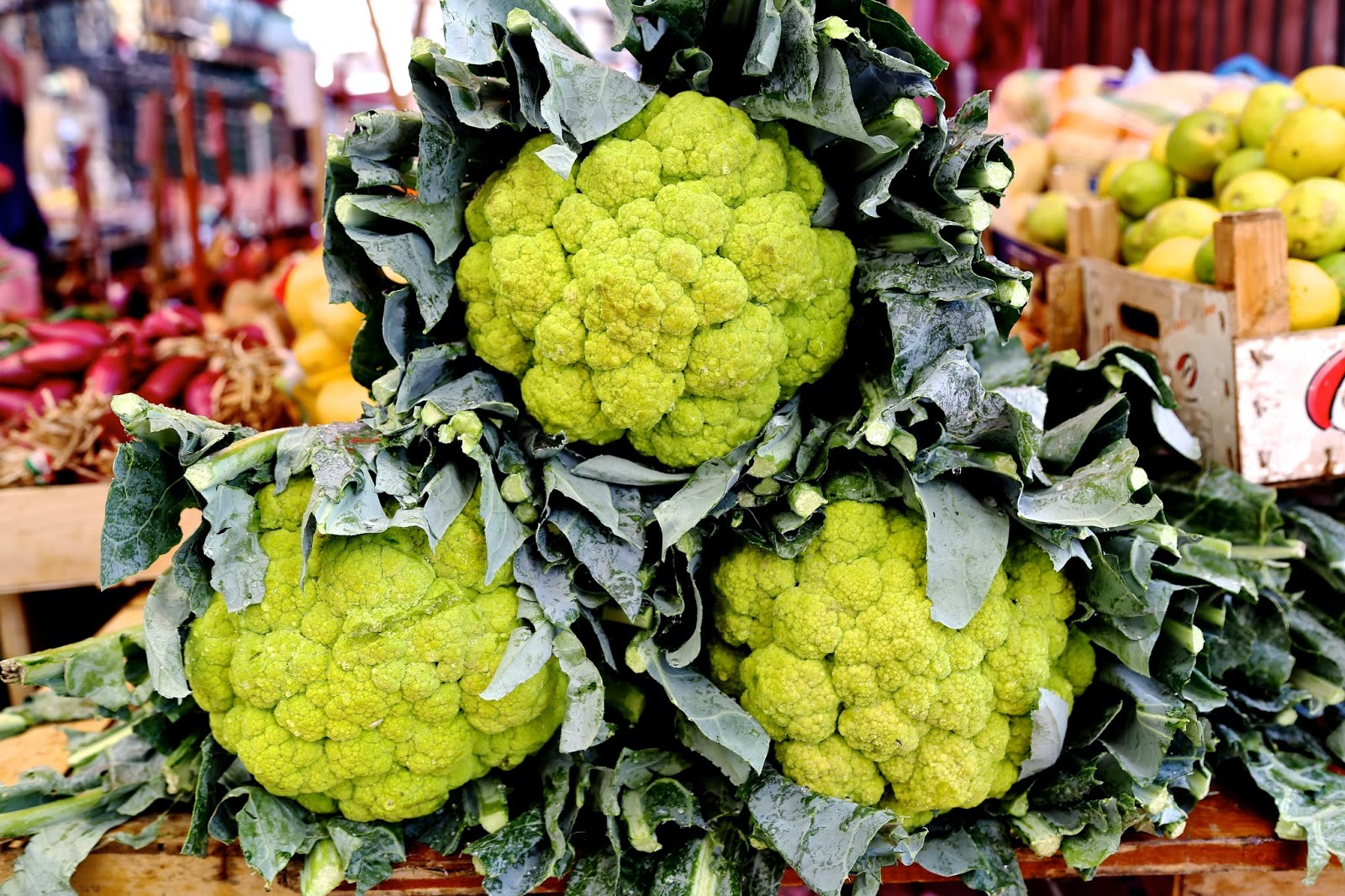Large green cauliflowers, Palermo, Sicily