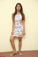 Nishi Ganda stunning cute in Flower Print short dress at Tick Tack Movie Press Meet March 2017 037.JPG