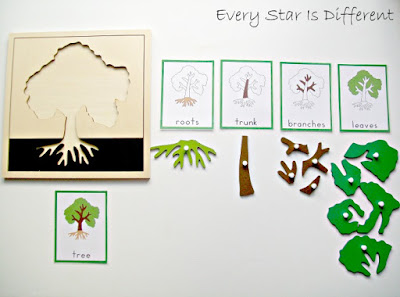 Parts of a tree activity.