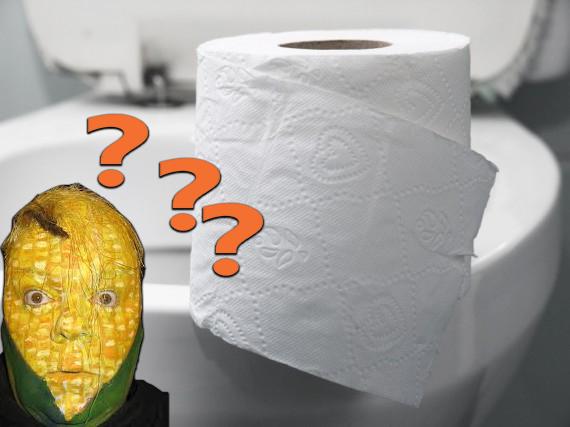 Sem%2BT%25C3%25ADtulo 3 - Como as pessoas se limpavam antes do papel higiênico