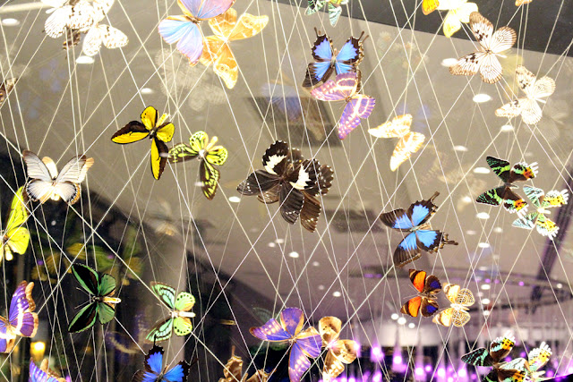 Butterflies in the lobby at Hotel Josef, Prague - boutique hotels, Czech Republic - Europe travel blog