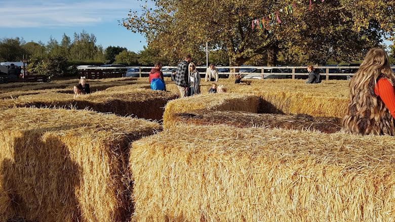 路線非常單一的稻草迷宮,小孩子遊樂天堂呢