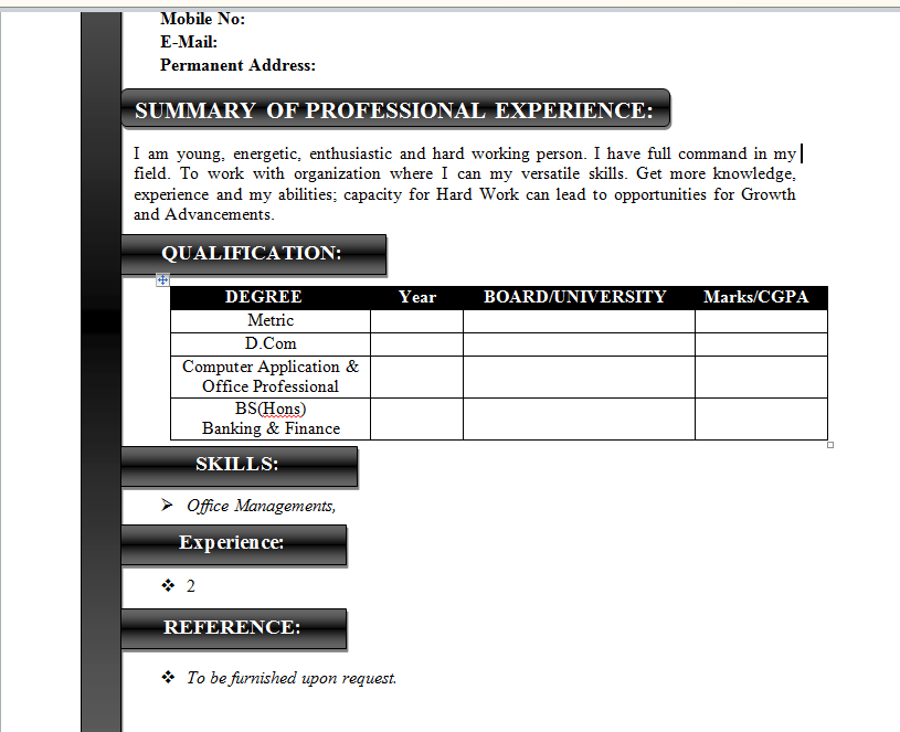 how to make your own curriculum vitae effectively and easy in ms word