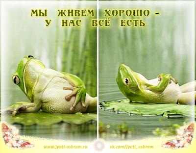 болото_джйотиашрам
