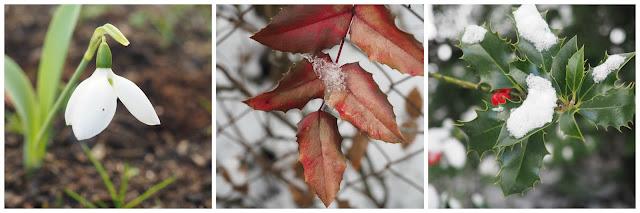 winterliebe_fotografie