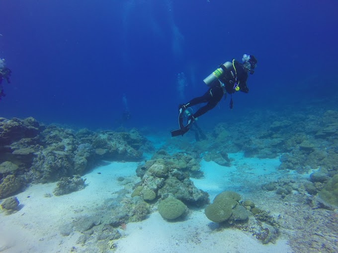 Scuba Diving as a profession and Scuba diving places in India