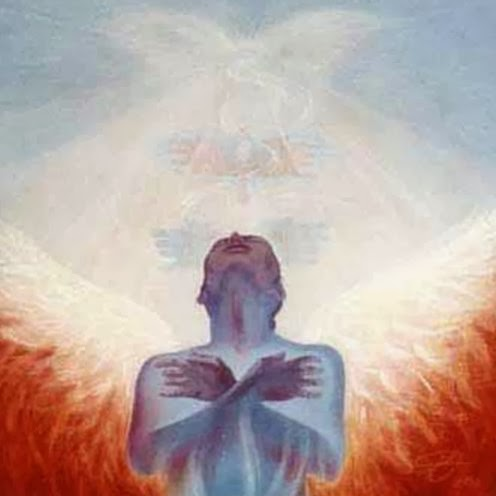 The Ascended Apprentice: Physical Ascension Symptom Relief