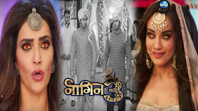OH NO! Bela Mahir's master plan splits back in deadly way, Villains in action mode in Naagin 3