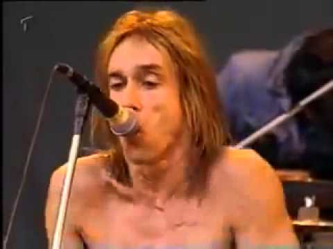 Iggy Pop, lust for life (live)