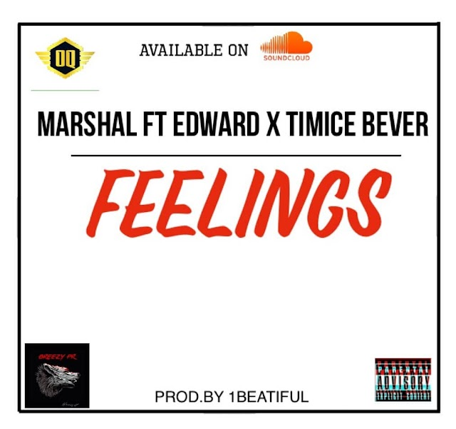 "[MUSIC] ""Feelings"" by  Marshal×Timice-bever×Edward"