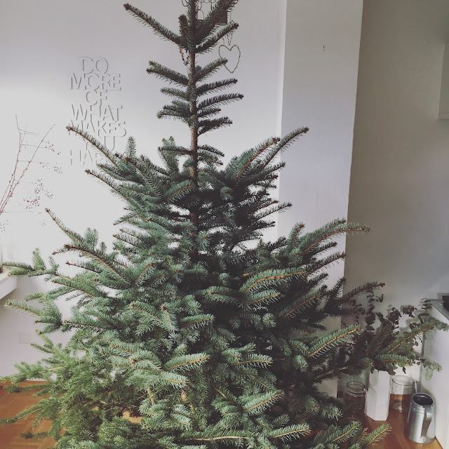 Oh Tannenbaum Hallo Januar 2018 Jules kleines Freudenhaus