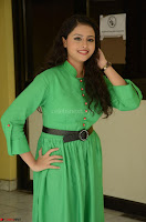Geethanjali in Green Dress at Mixture Potlam Movie Pressmeet March 2017 074.JPG