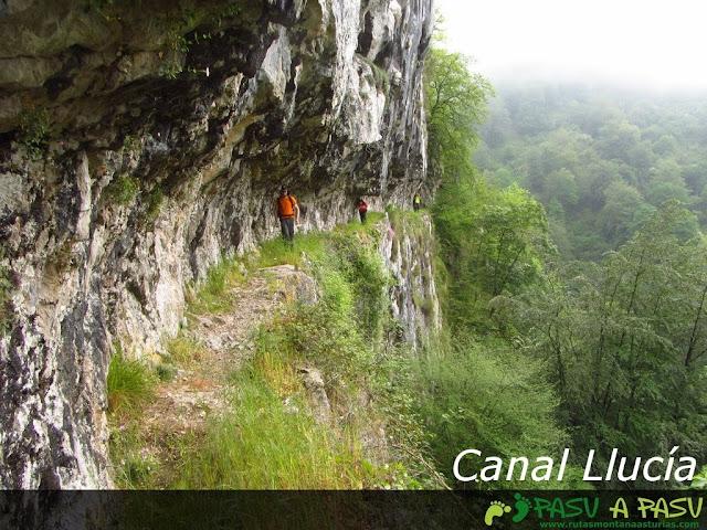 Canal del la Llucía, Cabrales