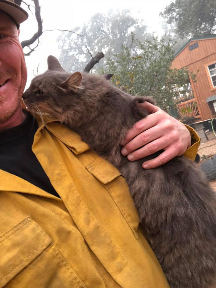 Heartwarming Story Of A Firefighter Rescuing A Cat From Wildfire In California