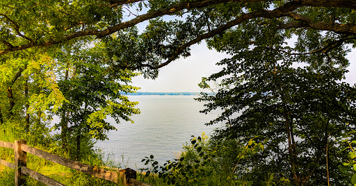 tree branches framing view of Lake Mendota