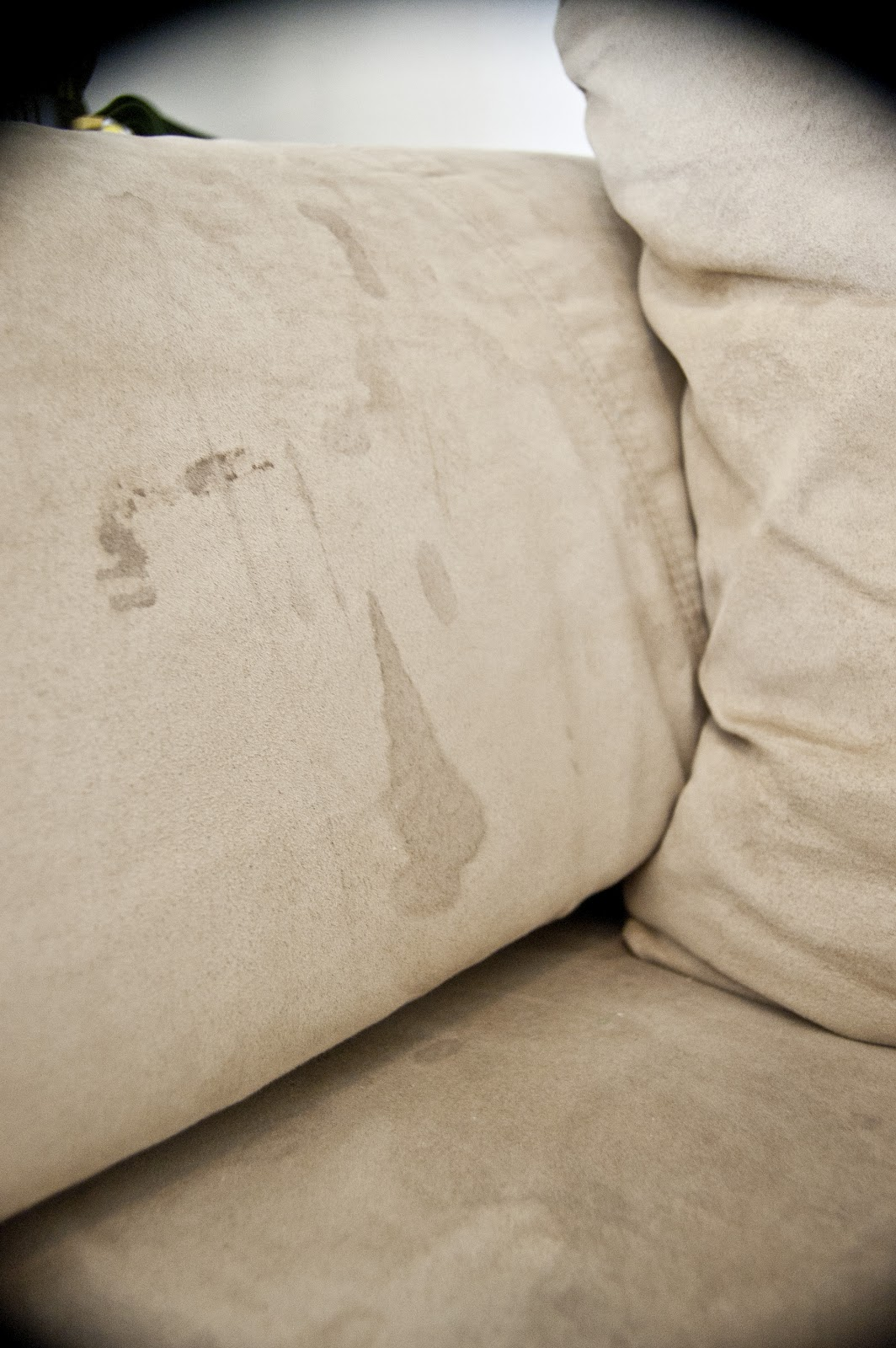 How To Clean Stains On Fabric Sofa Younger 551 East A Microfiber Couch