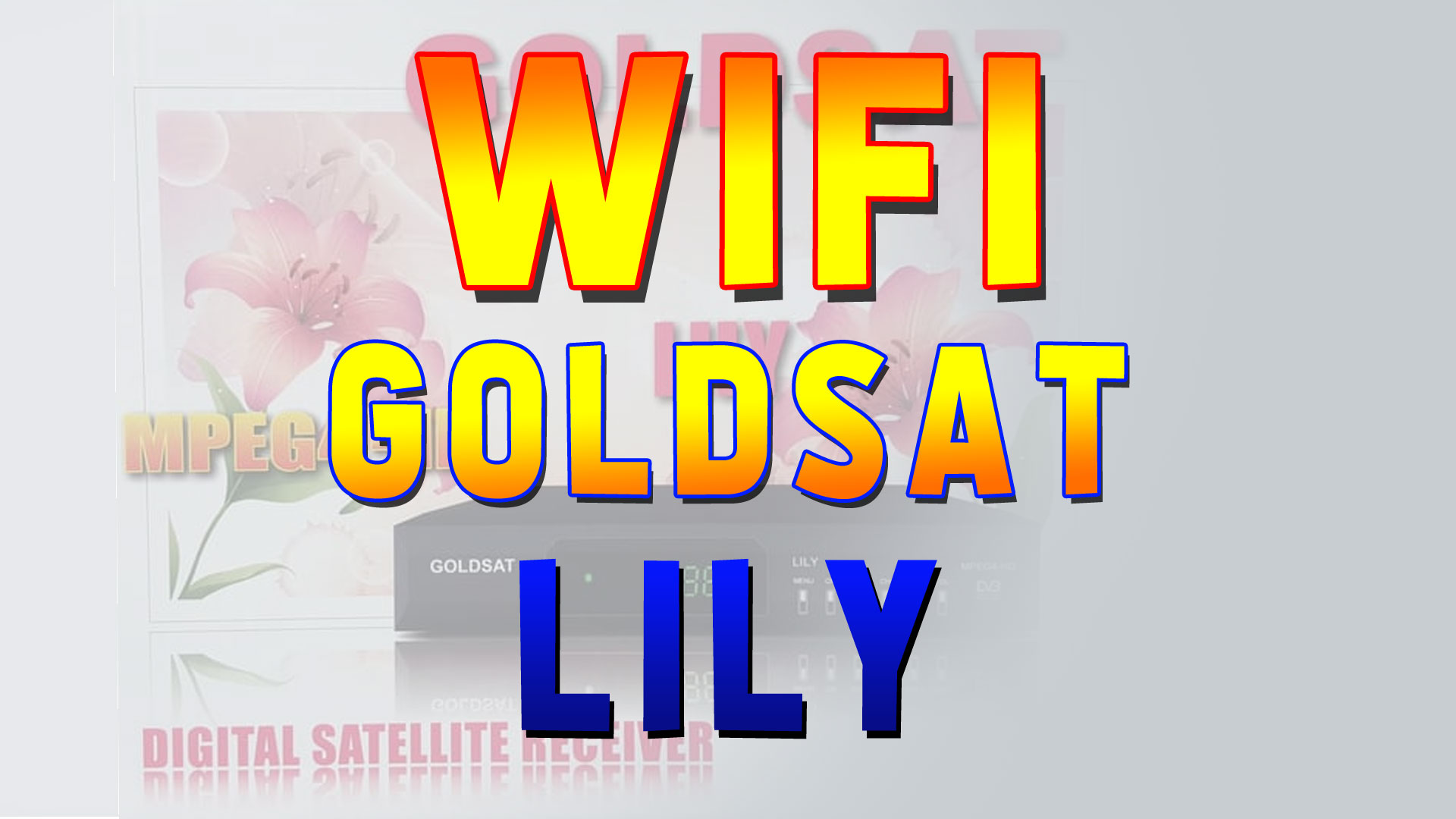Pengaturan Wifi Receiver Goldsat Lily HD