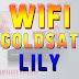 Pengaturan Receiver Goldsat Lily Koneksi Internet Wifi